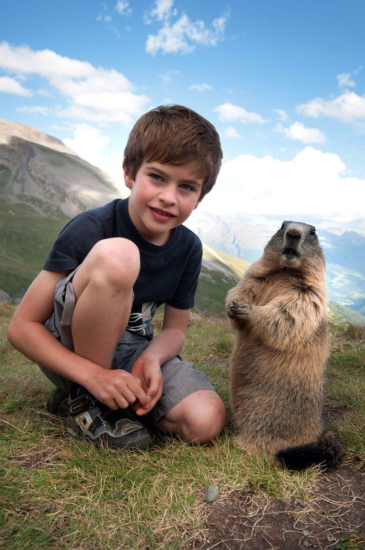 Дружба австрийского мальчика с сурками — Фото №3