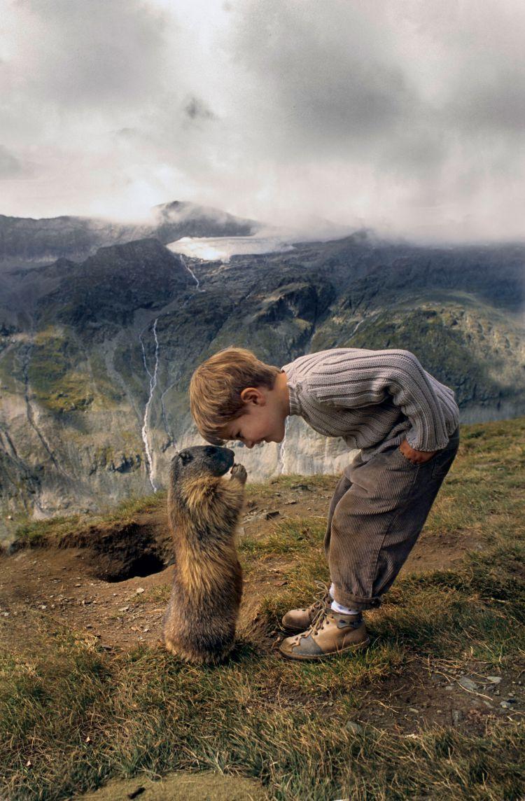 Дружба австрийского мальчика с сурками — Фото №5
