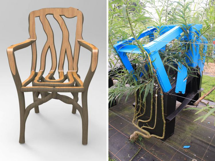 Full Grown: Выращивание стула