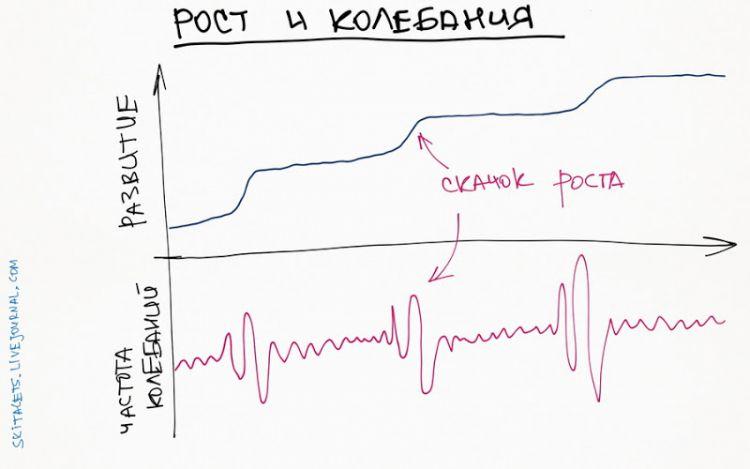 skitalets amplitude