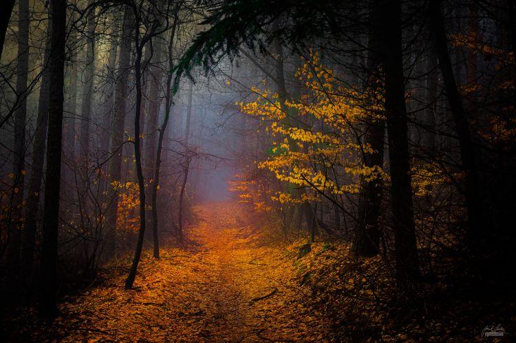 Общение с тенями