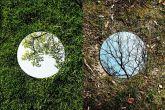 Зеркальный мир Себастьяна Маньяни