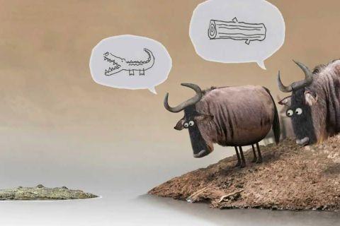 Мультфильм о том, почему проиграть спор бывает полезно