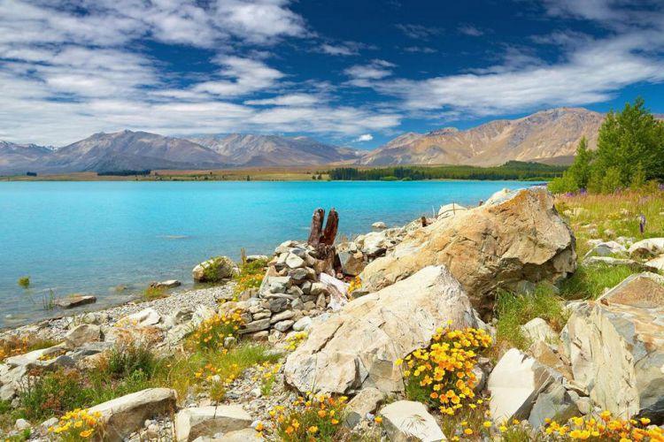 Удивительная красота озера Текапо