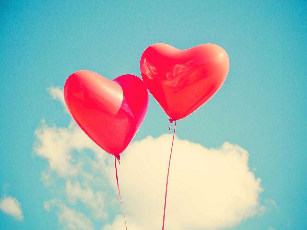 «Не привыкайте никогда к любви»