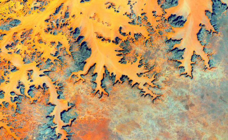 Год в космосе: лучшие снимки Скотта Келли