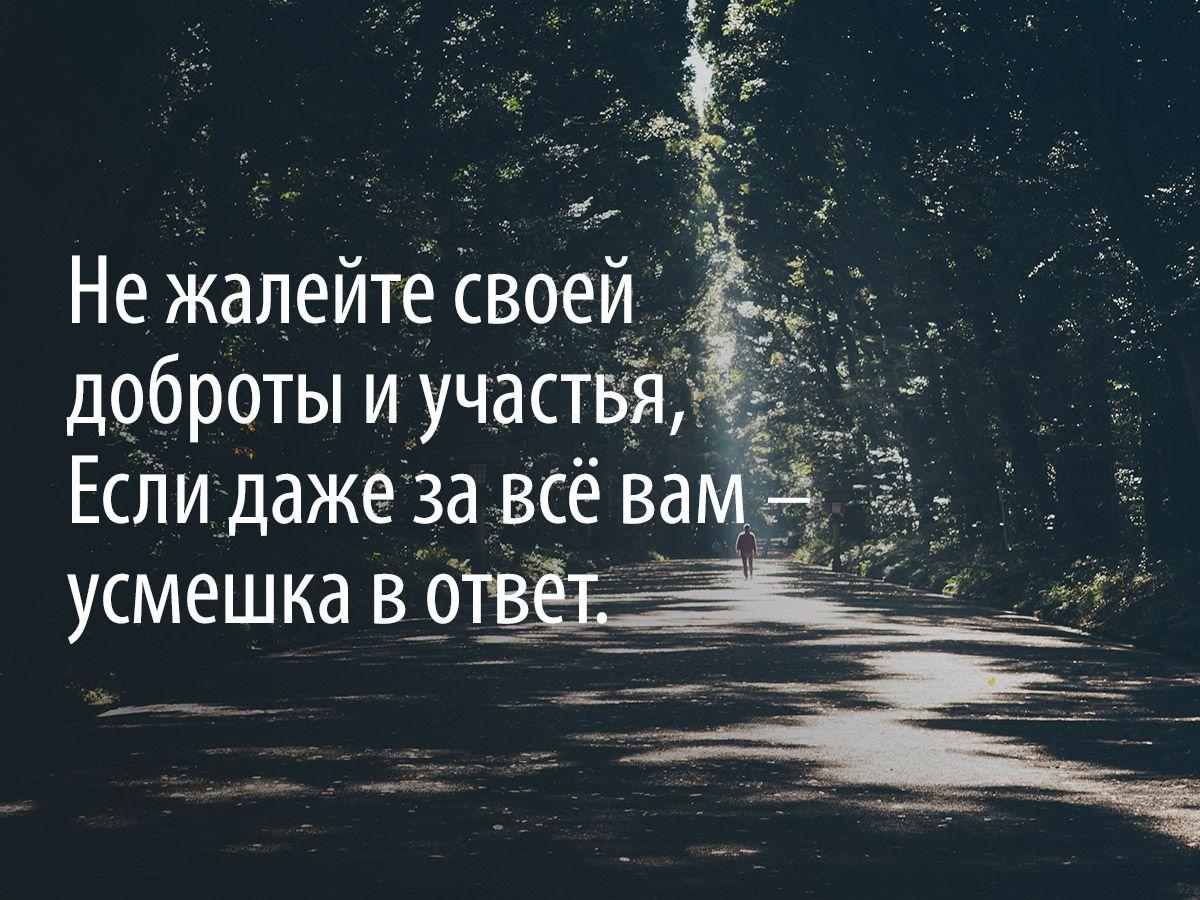 «Никогда ни о чем не жалейте вдогонку...»