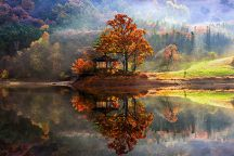 reflection-landscape-photography-jaewoon-u-cover-216x144.jpg