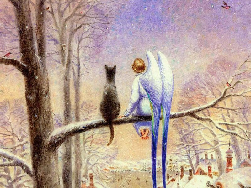 Добрая сказка про Кота и Ангела